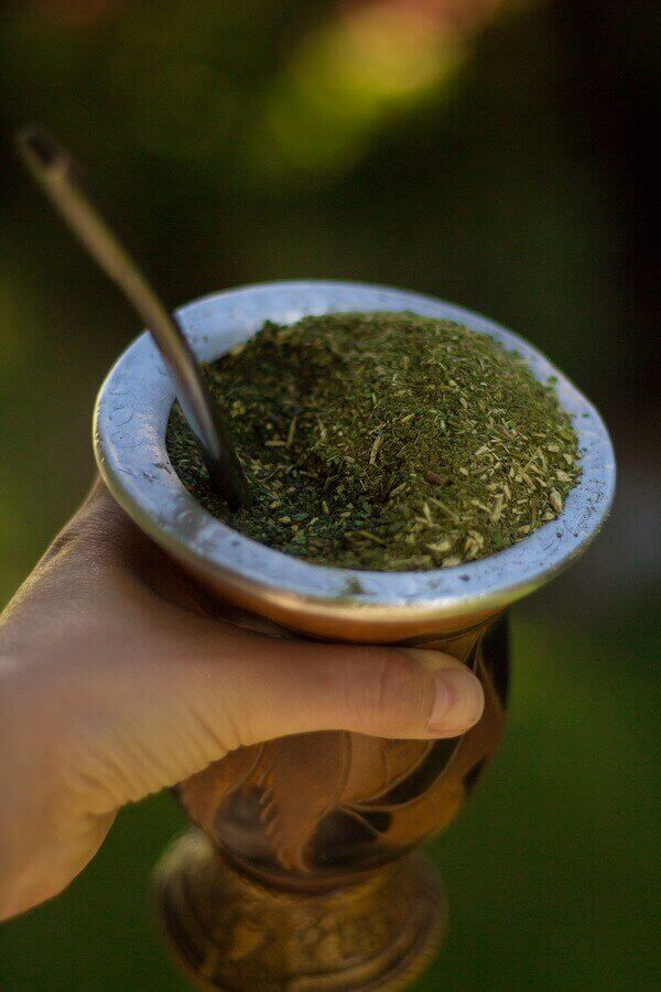 yerba mate in a cup